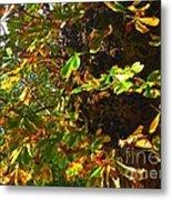 Golden Autumn Metal Print