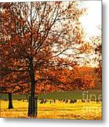 Golden Autumn Metal Print
