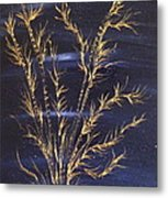 Golden Bamboos 3 Metal Print by Pretchill Smith