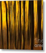 Golden Blur Metal Print by Anne Gilbert
