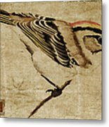 Golden-crowned Kinglet Metal Print by Carol Leigh