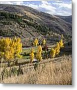 Golden Fall In Montana Metal Print