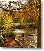 Golden Lake At Botanical Gardens Metal Print