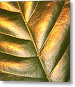 Golden Leaf 2 Metal Print