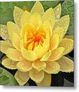 Golden Lily Metal Print
