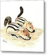 Golden-mantled Ground Squirrels Metal Print