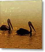 Golden Morning Metal Print by Mike  Dawson