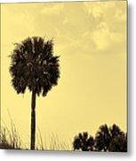 Golden Palm Silhouette Metal Print
