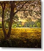 Golden Pastures Metal Print