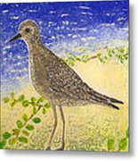 Golden Plover Metal Print by Anna Skaradzinska