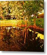 Golden Pond 4 Metal Print