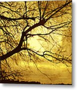 Golden Pond Metal Print by Ann Powell