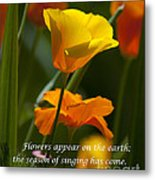 Golden Poppy Floral  Bible Verse Photography Metal Print