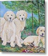 Golden Retriever Puppy Trio  Metal Print