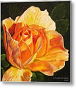 Golden Rose Blossom Metal Print