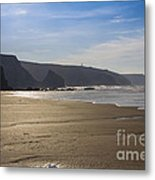 Golden Sands Metal Print