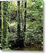 Golden Silence In The Forest Metal Print