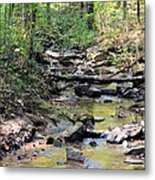 Golden Spring Waters Of Hurricane Branch Metal Print