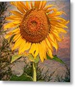 Golden Sunflower Metal Print by Adrian Evans