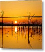 Golden Sunrise IIi Metal Print