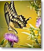 Golden Swallowtail Metal Print