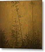 Golden Trees In Winter Metal Print