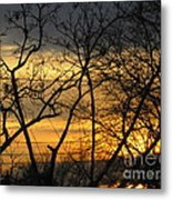 Golden Twilight 2 Metal Print
