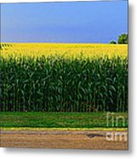 Golden Waves Of Grain Metal Print
