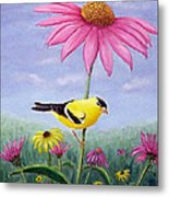 Goldfinch And Coneflowers Metal Print