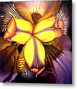 Goldie's Iris Metal Print
