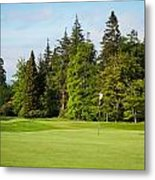 Golf Course Metal Print