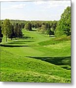 Golfer's Dream Metal Print