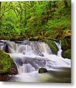 Golitha Falls And River Fowey Metal Print