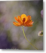 Good And Perfect Gifts Metal Print