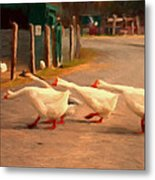 Goose Crossing Metal Print