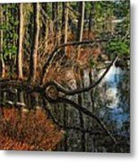 Goose Lake Twilight Metal Print