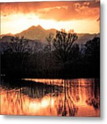 Goose On Golden Ponds 1 Metal Print