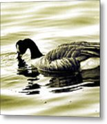 Goose Reflecting In The Water Metal Print