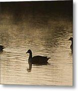 Goose Silhouette Metal Print