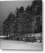 Gordon Black Metal Print