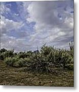 Gorgeous Cloud Cover Metal Print