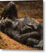 Gorilla - Painterly Metal Print