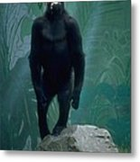 Gorilla Rock Metal Print