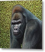 Gorilla With A Hedge Metal Print by James W Johnson