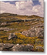 Gorse And Heather Metal Print