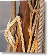 Got Enough Rope  Metal Print by Eugene Bergeron
