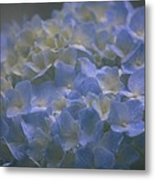 Got The Blues For You Metal Print