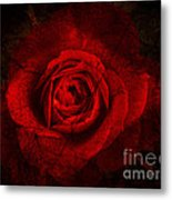 Gothic Red Rose Metal Print