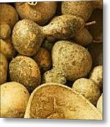 Gourds Metal Print