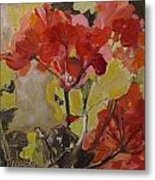 Graceful Geraniums Metal Print